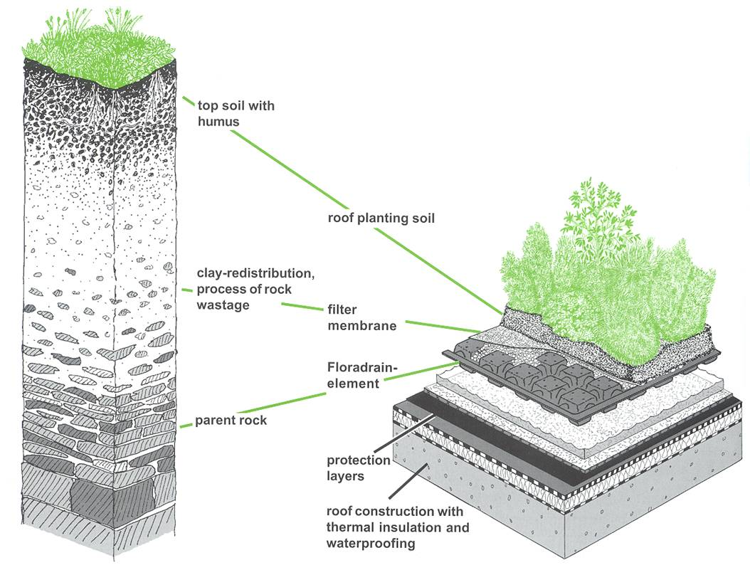 Roof planting details typical green roof sc for Soil details