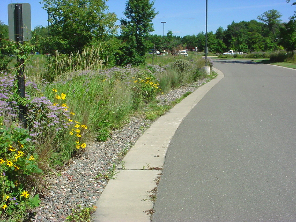 File infiltration trench lino minnesota for Design criteria of pond