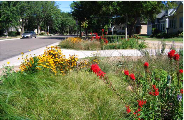This is a picture of Bioretention facility in St Paul MN
