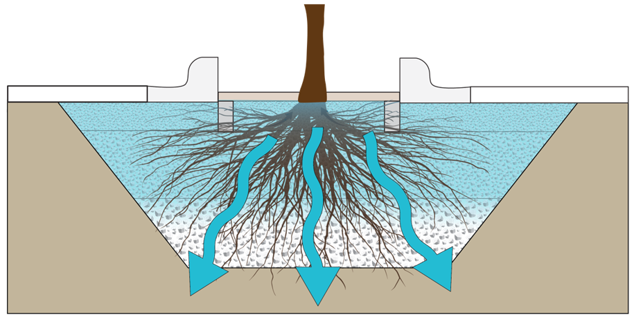 File Tree Trench Icon Png Minnesota Stormwater Manual