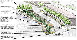 schematic showing a bioretention parking lot island