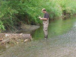 This image shows a person documenting findings while inspecting an outfall