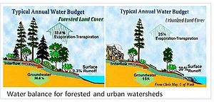 schematic illustrating differences in the water budget between forested and urban watersheds