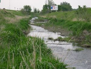 photo of a wet swale