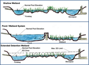 Figure illustrating major stormwater wetland types, including shallow wetlands, the pond/wetland system, and an extended detention wetland