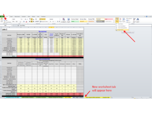 screen shot showing how to create new worksheet