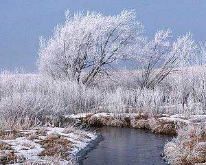 Photo of a snow covered field with a stream