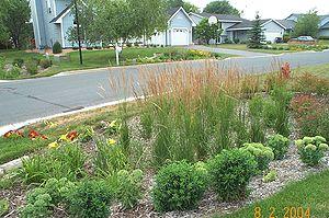 Burnsville rain gardens - retroing for water quality ... on coastal garden design, urban garden design, rural garden design, rain garden design,