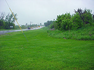 Photo of a Swale city of Woodbury MN