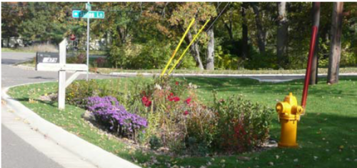 This image shows rain garden used to infiltrate street runoff