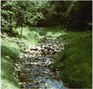 This image shows a picture of a stream buffer