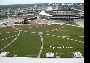 photo of green roof on the Target Center in Minneapolis, MN