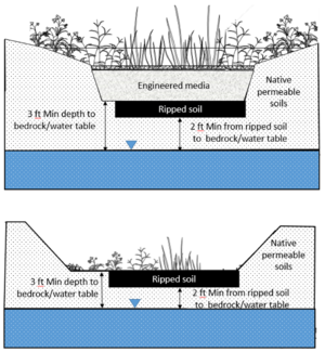 schematic illustrating separation distance from bottom of infiltration BMP and soil ripped zones to water table or top of bedrock