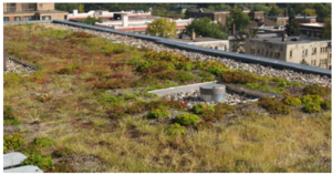 This image shows Green Roof at Edgewater Condominiums Minneapolis