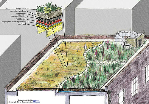 Green Roof Fact Sheet Minnesota Stormwater Manual