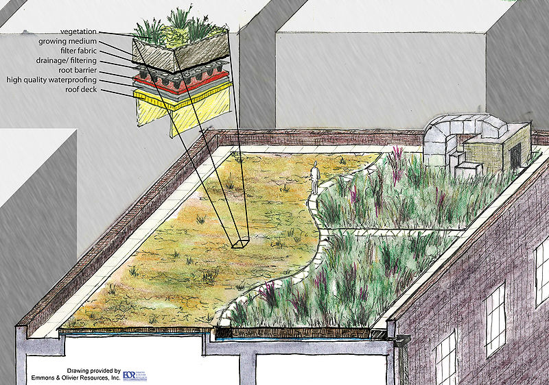 File:Green roof schematic.jpg