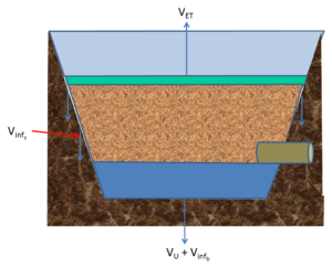 water loss mechanisms bioretention with raised underdrain