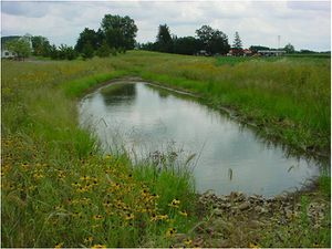 The Best State Stormwater Design Manual